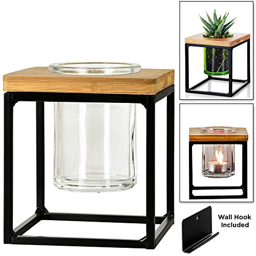 Couronne Co. Classic Pablo Cube Hanging Planter Vase, 5 Inches tall, Black Frame / Clear Glass, M260-201-00