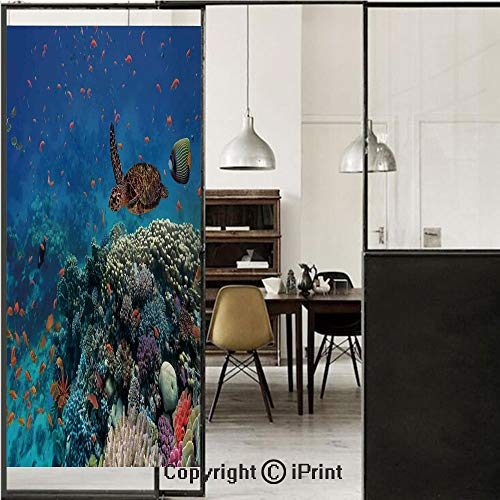 Ocean Decor 3D Decorative Film Privacy Window Film No Glue,Frosted Film Decorative,Exotic Fish and Turtle in Fresh Water on Stony Corals Bio Diversity Wild Life Photo,for Home&Office,17.7x59Inch Multi