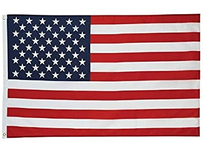 Flags Unlimited U.S. Nylon Flag - 3x5 Feet - Printed Stars and Stripes