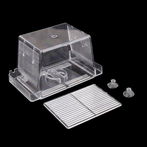 B Blesiya 水槽用 観賞魚 ダブル 孵化場 稚魚 アイソレーシション ボックス インキュベーター