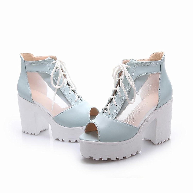 Elegance Women's Fashion Lace-up Peep-toe Sweet Voile Mesh Platform High Chunky Heel Summer Boots