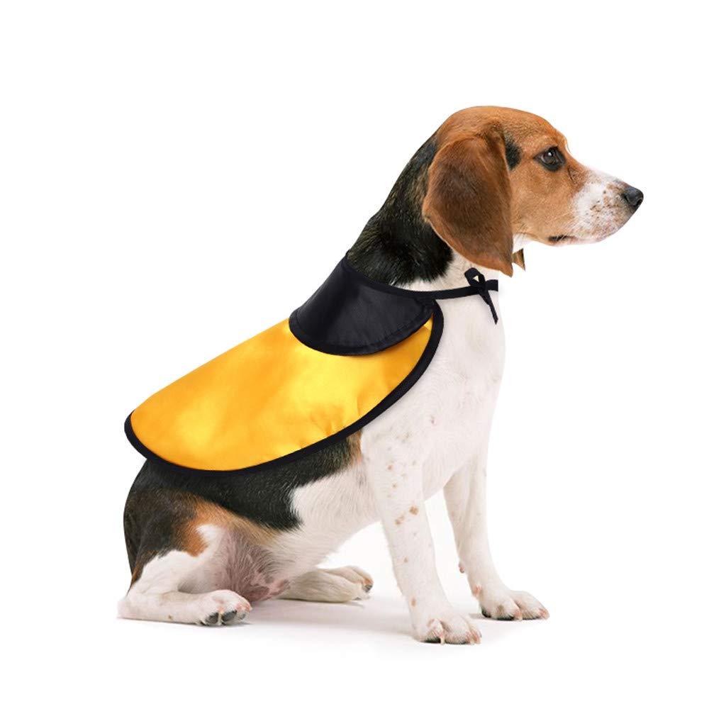 Sylar Ropa De Halloween para Mascotas, Capa De Halloween para ...