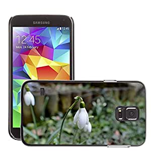 Hot Style Cell Phone PC Hard Case Cover // M00308267 Snowdrop Plant Nature Spring Flower // Samsung Galaxy S5 S V SV i9600 (Not Fits S5 ACTIVE)