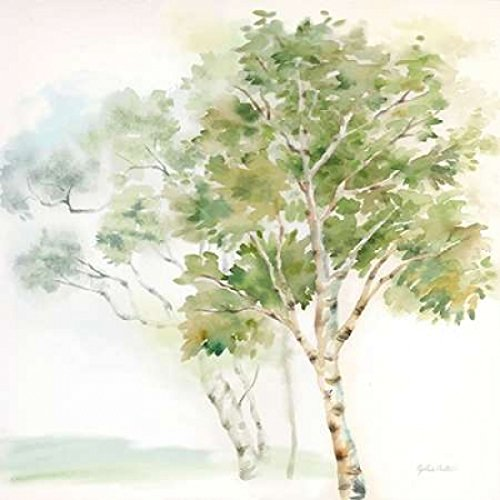 24 x 24 Woodland Trees II Poster Print by Cynthia Coulter