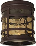 Cheap Craftmade Z5017-91 Outdoor Flush Mount Light with Hammered Champagne Glass Shades, Rustic Iron Finish