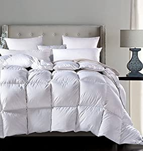 ROSECOSE Luxurious All Seasons Goose Down Comforter Duvet Insert Dobby Checkered 1200 Thread Count 750+ Fill Power 100% Cotton Shell Hypo-allergenic Down Proof With Tabs from ROSECOSE