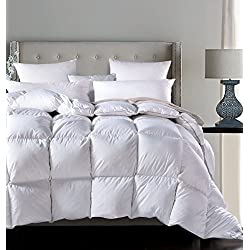 ROSECOSE Luxurious All Seasons Goose Down Comforter Queen Duvet Insert Dobby Checkered Hypo-allergenic 1200 Thread Count 750+ Fill Power 100% Cotton with Tabs Dobby Checkered (Queen,Dobby Checkered)