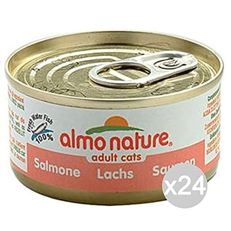 Juego 24 Almo Nature gato 5029 lata 70 sne comida para gatos: Amazon.es: Productos para mascotas