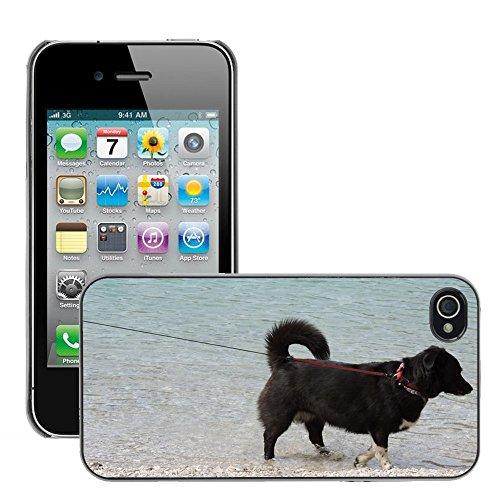 Bild Hart Handy Schwarz Schutz Case Cover Schale Etui // M00133819 Hundeleine Schwarz Lake Beach // Apple iPhone 4 4S 4G