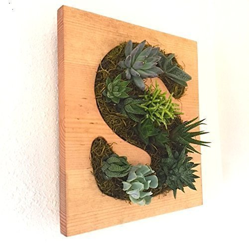 Living Wall Monogram Planter can be found a AMAZON