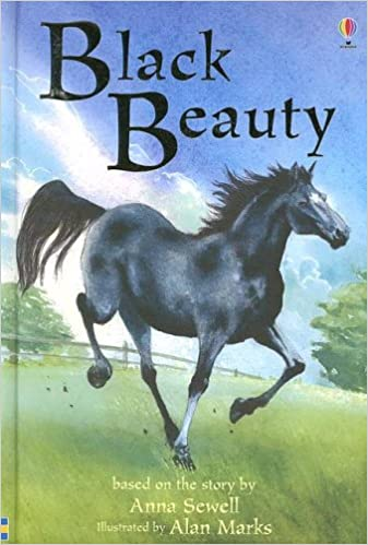 Image result for black beauty book