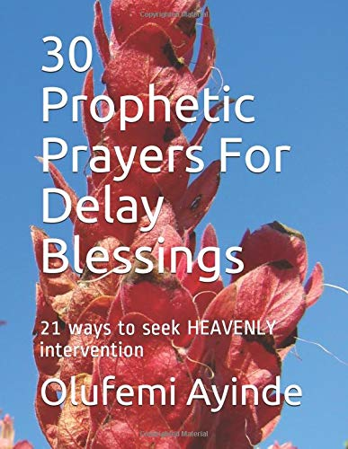Read Online 30 Prophetic Prayers For Delay Blessings: 21 ways to seek HEAVENLY intervention in THE BIBLE ebook