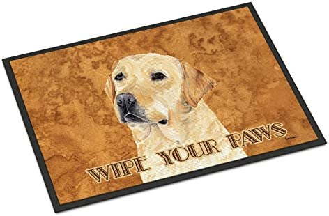 Caroline s Treasures SC9133JMAT Labrador Indoor or Outdoor Mat 24×36 Doormat, 24H X 36W, Multicolor