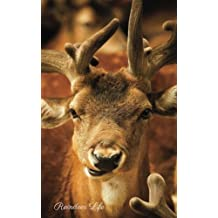 Reindeer Life: Password Organizer, Password Storage, Internet Address, Logbook, Diary, information, internet safety, Journal, Notebook, Directory, 5x8in small A-Z list, 60 pages with 208 places to store your information (personal safety)