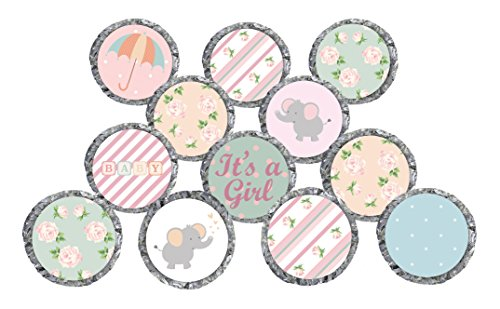 Shabby Chic Baby Girl Shower Stickers for Hershey's Kisses Favors, Decorations, Thank You Cards, and Invitations (Set of 324 - CANDY NOT INCLUDED)