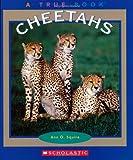 Cheetahs, Ann O. Squire, 0516279327