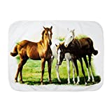 Royal Lion Baby Blanket White Trio of Horses