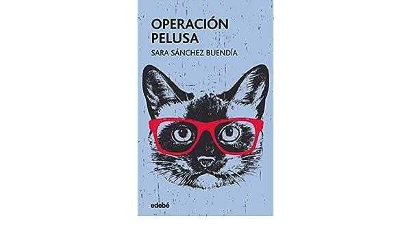 Los gatos de Benidorm (Spanish Edition)