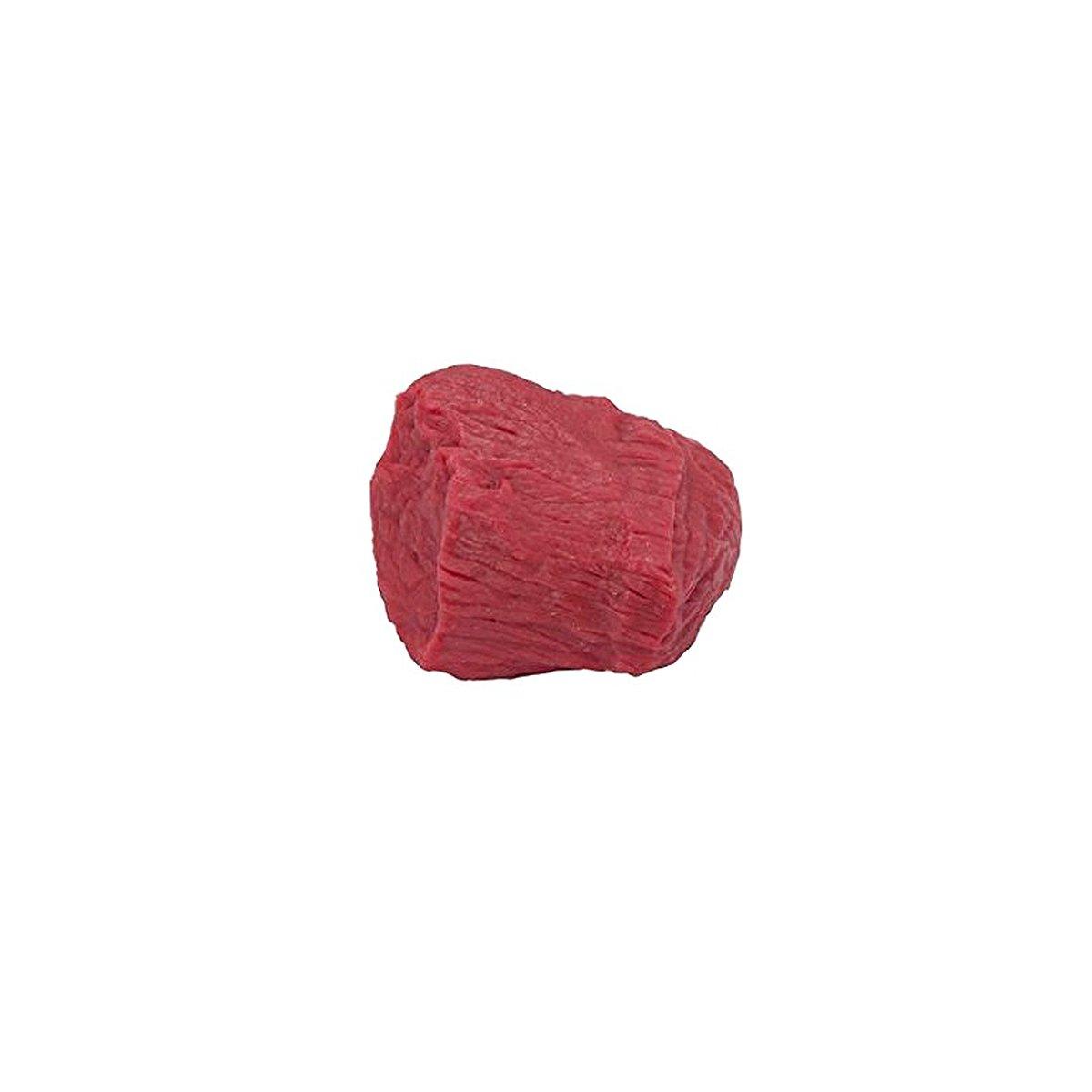 格安販売の Nasco wa14573uライフ/フォーム本体1ポンドの筋肉のレプリカ Nasco B0083Y0LCW B0083Y0LCW, クラフトモンキー:ed0ae53c --- a0267596.xsph.ru