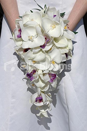 White & Ivory Orchid & Calla Lily Cascading Bridal - Bouquet Orchid Lily Calla