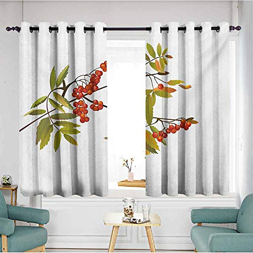 AndyTours Curtains for Bedroom,Rowan Fresh Organic Ashberry Tree Botanical Natural Gardening Plants Illustration,Great for Living Rooms & Bedrooms,W55x45L,Green Red Brown ()