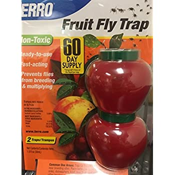 Amazon.com : Terro 2500 Fruit Fly Trap (3 Pack) : Home ...