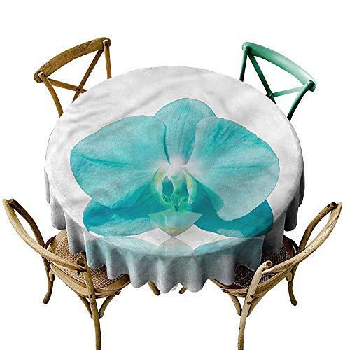 - ScottDecor Round Tablecloth Cotton Aqua,Blue Orchid Nature Botanic D50,for Umbrella Table