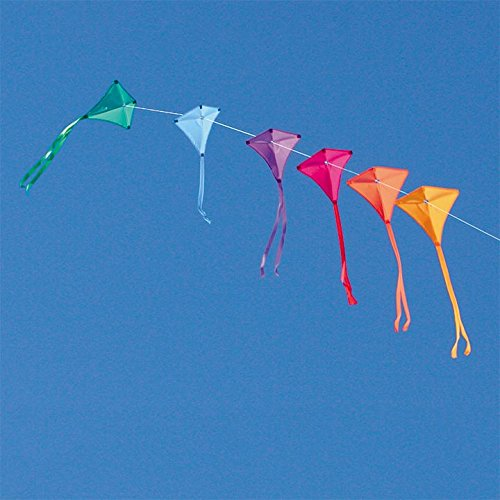 Into The Wind Jewel Train Kite