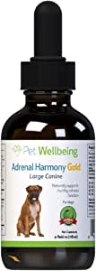 Pet Wellbeing - Adrenal Harmony - Natural Support for Adrenal Dysfunction and Cushing's in Dogs (4 Ounce)