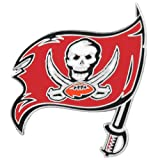 WinCraft NFL Tampa Bay Buccaneers 46601014 Collector Pin Jewelry Card