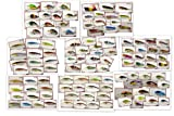 Akuna Bulk Pack with Fishing Lures, 112 Crank Baits, Spoons and Spinner Baits