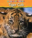 Tiger Cub, Monica Hughes, 1597161551