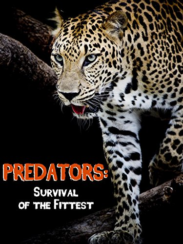 Predators-Survival-of-the-Fittest-No-Dialogue
