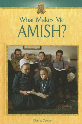 What Makes Me Amish?