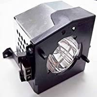 Fulites TB25-LMP replacement lamp with Housing For Toshiba TVs