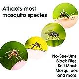 Mosquito Magnet OctenolSR 2-Pack Octenol 6