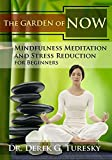 Best Meditation Dvds - Mindfulness Meditation and Stress Reduction for Beginners: The Review