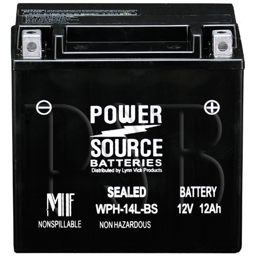 14L Bs Motorcycle Battery - 7