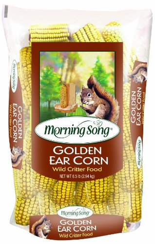 Morning Song 11412 Golden Ear Corn Wildlife Food,  6.5-Pound ()