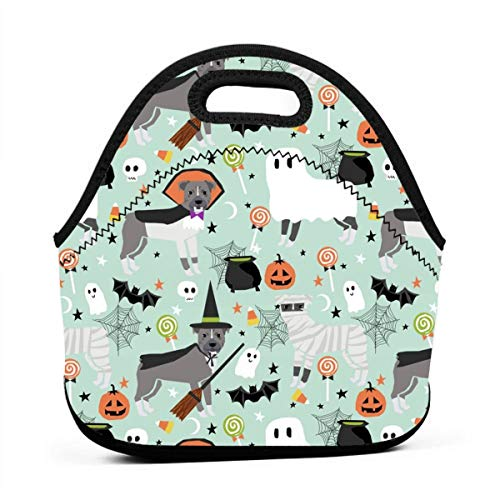 Pitbull Halloween Costume Dog Vampire Ghost Mummy Light Lunch Bag Insulated Thermal Lunch Tote Outdoor Travel Picnic Carry Case Lunchbox Handbags with -