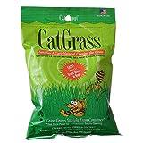 Gimborn Cat Grass Plus (6 Pack)