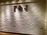 3D Wall Panels FRP Faux Stone Brick Wallpanel for