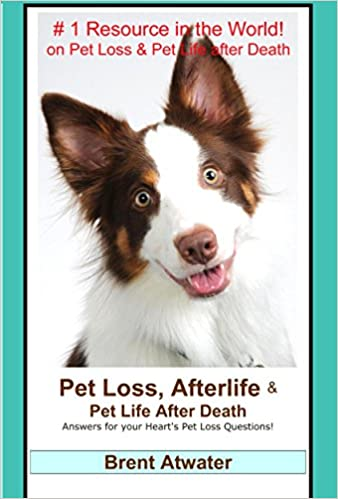 Download Pet Loss, Afterlife & Pet Life after Death: Answers for your Heart's Pet Loss Questions! PDF