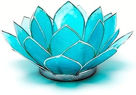 Find Something Different Trouver Quelque Chose de Bleu Clair Capiz Coque Lotus Th/é Lumi/ère Bougie Titulaire en Bambou Multicolore
