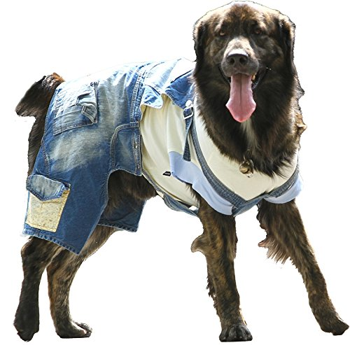 DoggyDolly Authentic Classic Big Dog Denim Overalls, Blue, Small