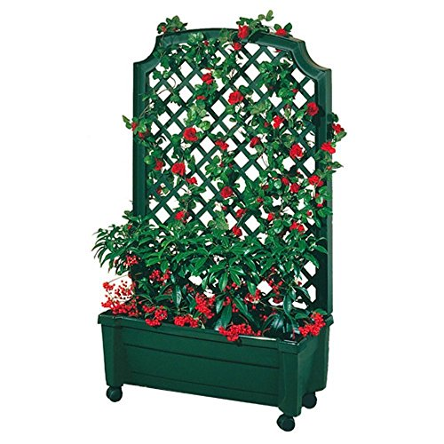 Rectangular Trellis - Exaco Trading 1.416Green Calypso Planter with Trellis and Self Watering System, Green