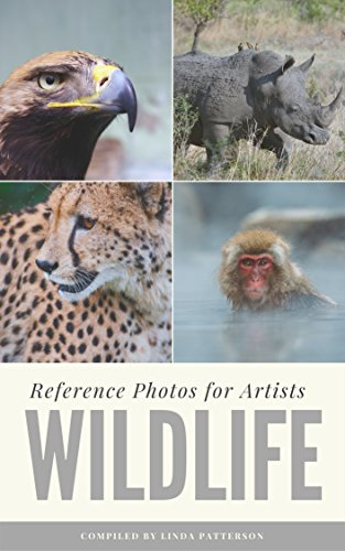 Wildlife: Reference Photos for Artists (Learn To Draw The Human Form compare prices)