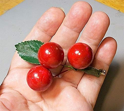 30s Red Celluloid Large Cherries Brooch Large Brooch is 3 Inches x 2 Inches Large Enough for a Coat. Vintage All Original Bright Red Cherry Brooch. ()