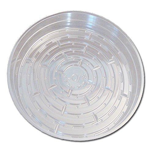 Six Pack of Crystal Clear Plastic Saucers - 10 Inch
