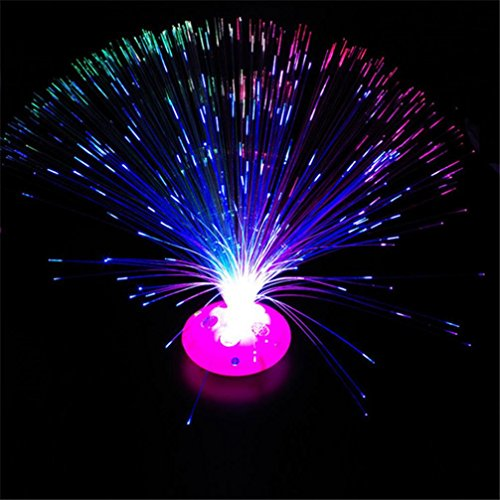 Tonsee Color Changing LED Fiber Optic Night Light Lamp Stand Decor Colorful Toy Color Send Random